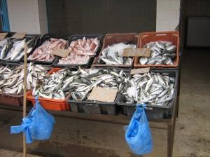noch einen blick in den fischmarkt